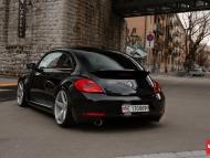 VW_Beetle_CV3_e5d