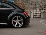 VW_Beetle_CV3_f38