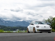 All Other Makes_VW Beetle _VVSCVT_6d0