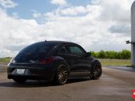 VW_Beetle_VFS2_d0c