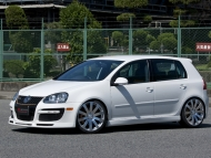 alpil-vw-golf-gti-rs-type2-8