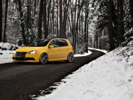 cdc-carbon-dach-vw-golf-5
